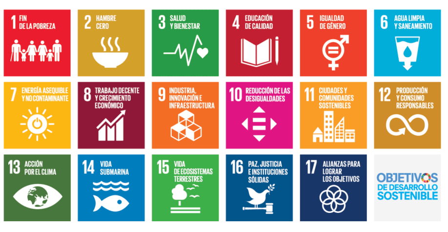 Figura 2. Objetivos de Desarrollo Sostenible (ODS)