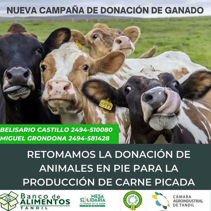 donación de animales