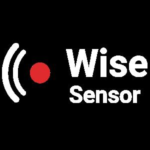 Wise Sensor